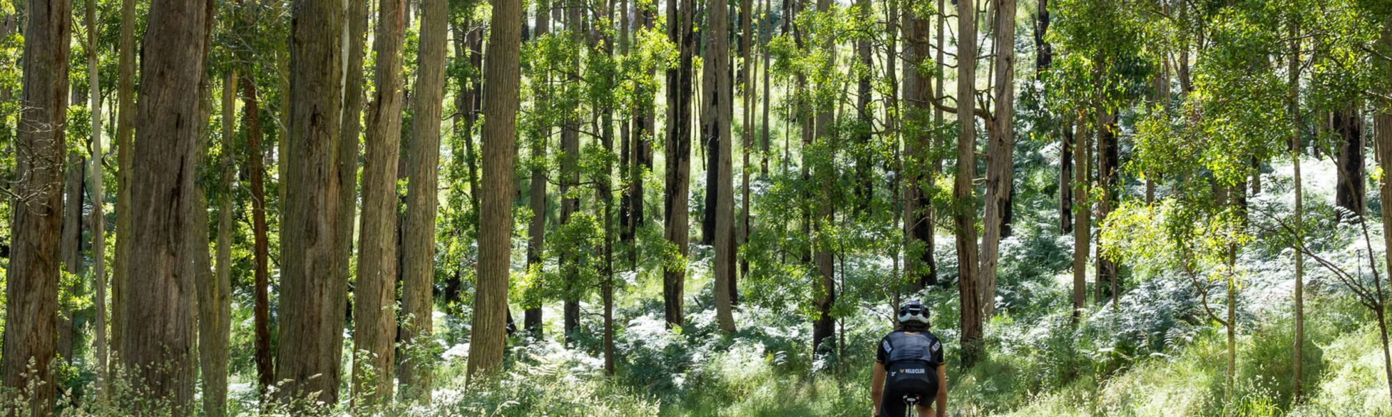 Cycling in Ballarat (2) (1)